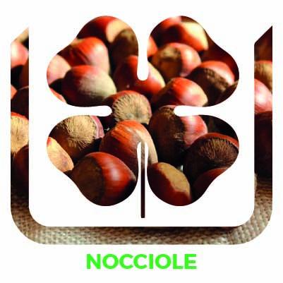 Nocciole